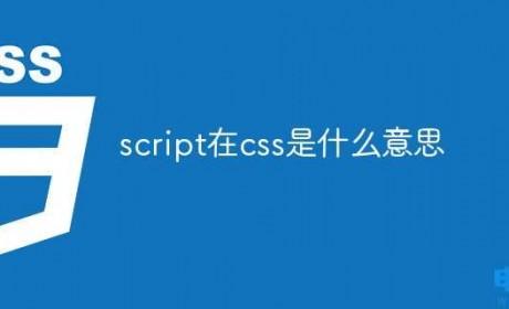 script在css是什么意思