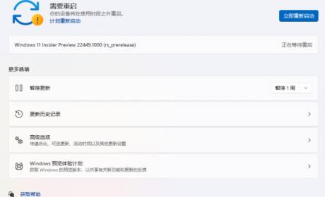 被微软踢出Dev通道如何更新Win11 22449.1000版本?